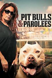 Pit Bulls and Parolees