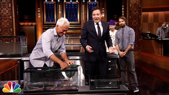 Watch Late Night with Jimmy Fallon Season  - Jeremy Wade Brings River Monsters to Jimmy, Will Forte and Adam Horovitz Online
