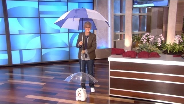 Watch The Ellen DeGeneres Show  Season  - Memorable Monologue: What's in Store? Online