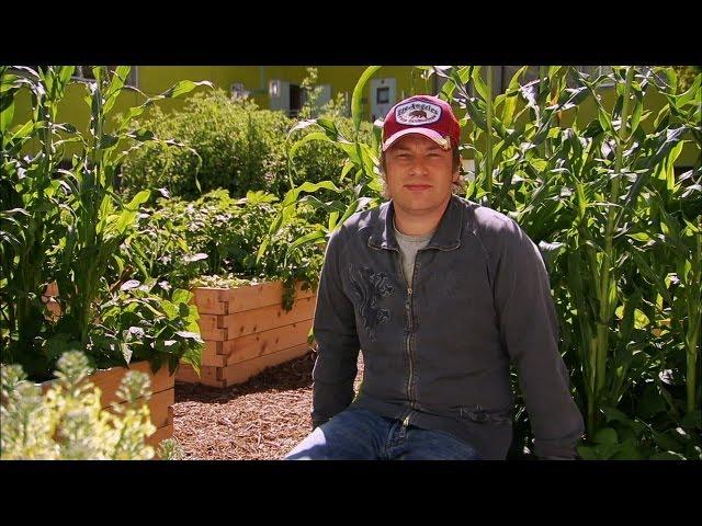 Watch Jamie Oliver Food Revolution Season  Episode