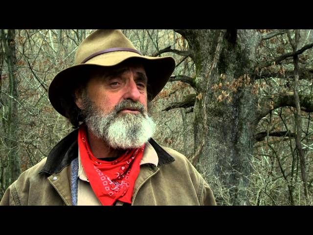 Watch full episodes of mountain monsters