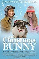 The Christmas Bunny