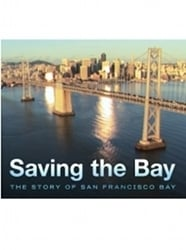 Saving the Bay