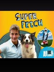 Super Fetch